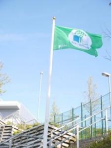 Eco Flag for website