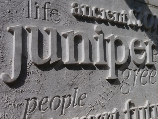 Juniper inscription for home page